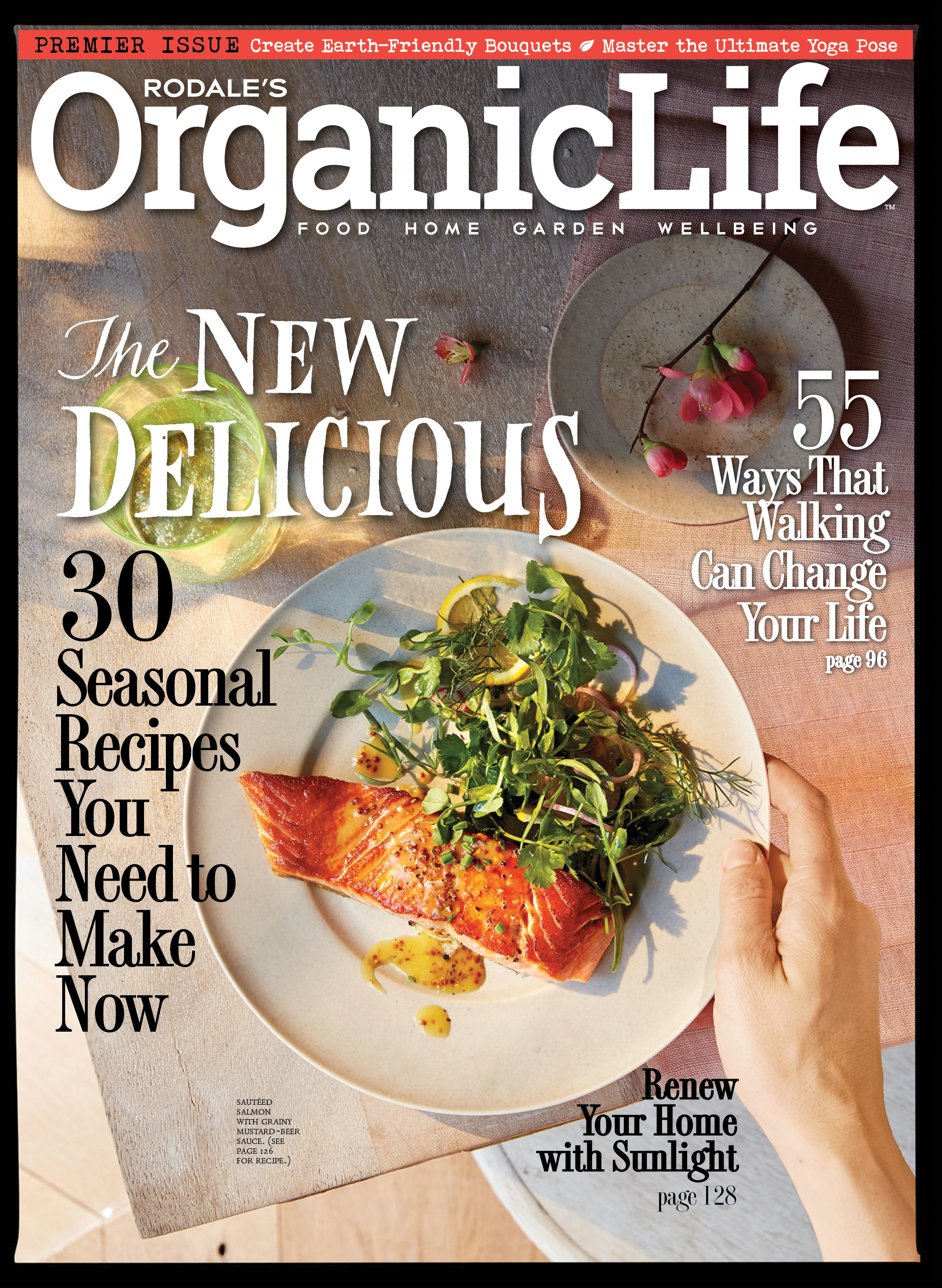Rodales organic life the story of a perfect magazine launch from rodales organic life forumfinder Image collections
