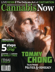 Cannabis Now 1-1