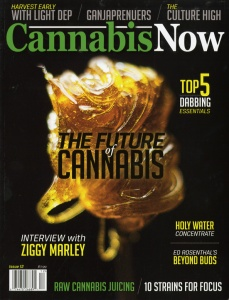 Cannabis Now 2-2