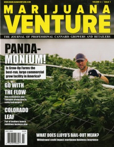 Marijuana Venture-25 (2)