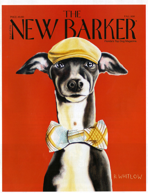 the new barker magazine at last florida dogs have their own new