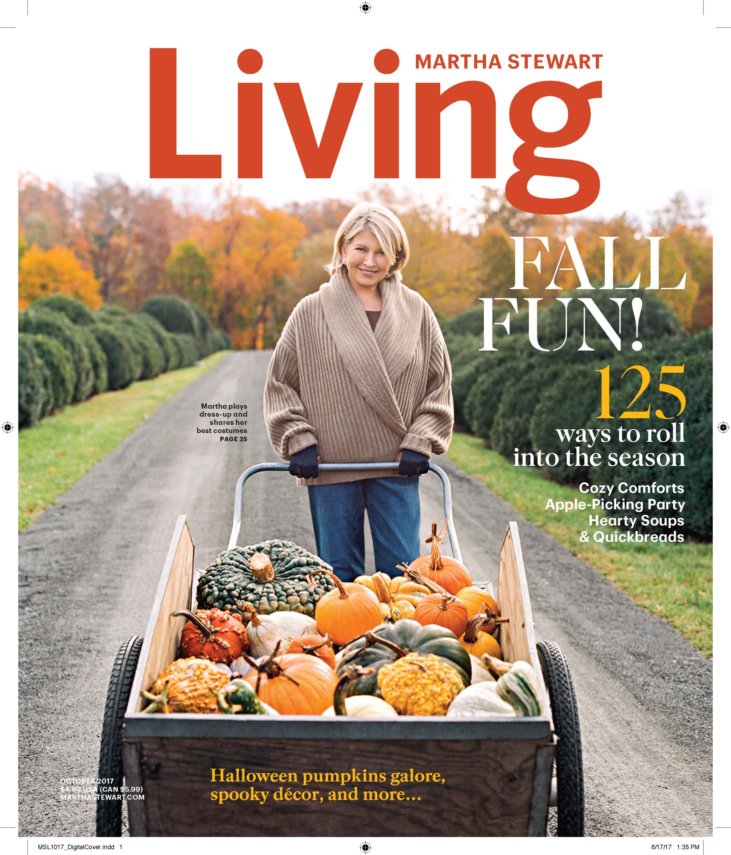 martha stewart living a recipe for magazine success stay authentic to your namesake pure to your audience the mr magazine interview with elizabeth